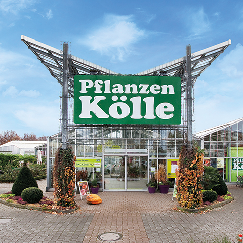 pflanzen k lle gartencenter gmbh co kg fellbach fellbach kontaktieren. Black Bedroom Furniture Sets. Home Design Ideas