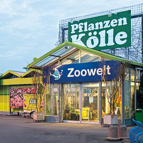 Pflanzen Kolle Gartencenter Gmbh Co Kg Berlin Dallgow