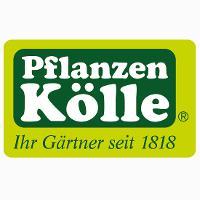 Pflanzen-Kölle Gartencenter GmbH & Co. KG Berlin - Borgsdorf