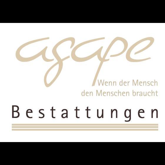 Bild zu Agape Bestattungen in Bad Sassendorf
