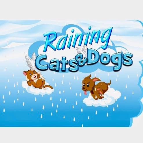 Raining Cats and Dogs Mobile Grooming