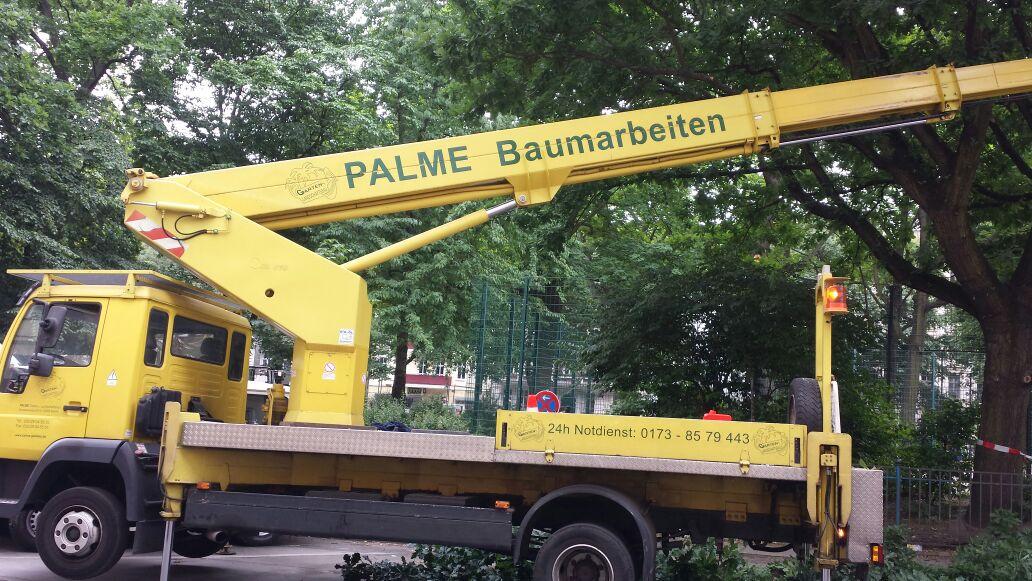 Garten Und Landschaftsbau Berlin palme garten landschaftsbau berlin lankwitzer straße 42 43