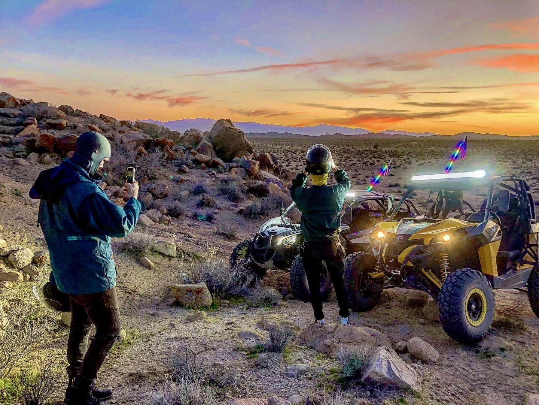Wild Desert Tours