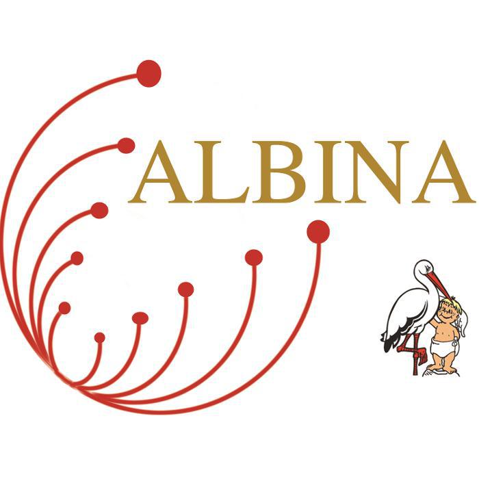 Bild zu ALBINA in Stein in Mittelfranken