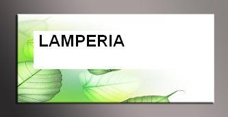 LAMPERIA