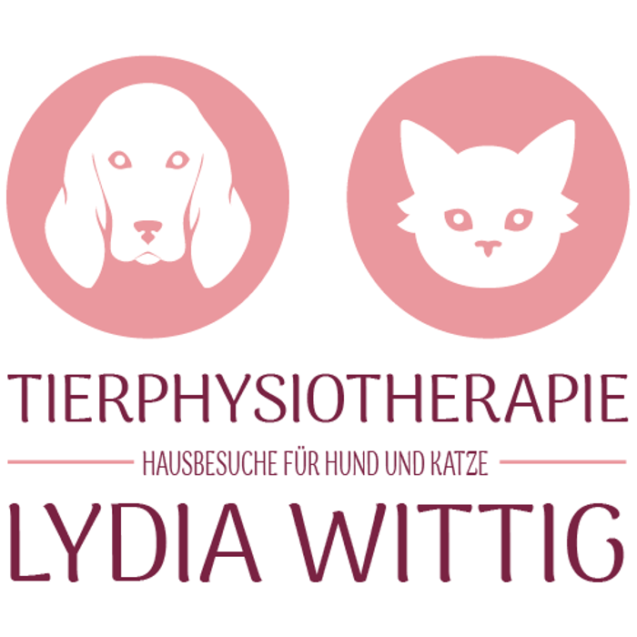 Bild zu Tierphysiotherapie Lydia Wittig - Hausbesuche für Hund und Katze in München