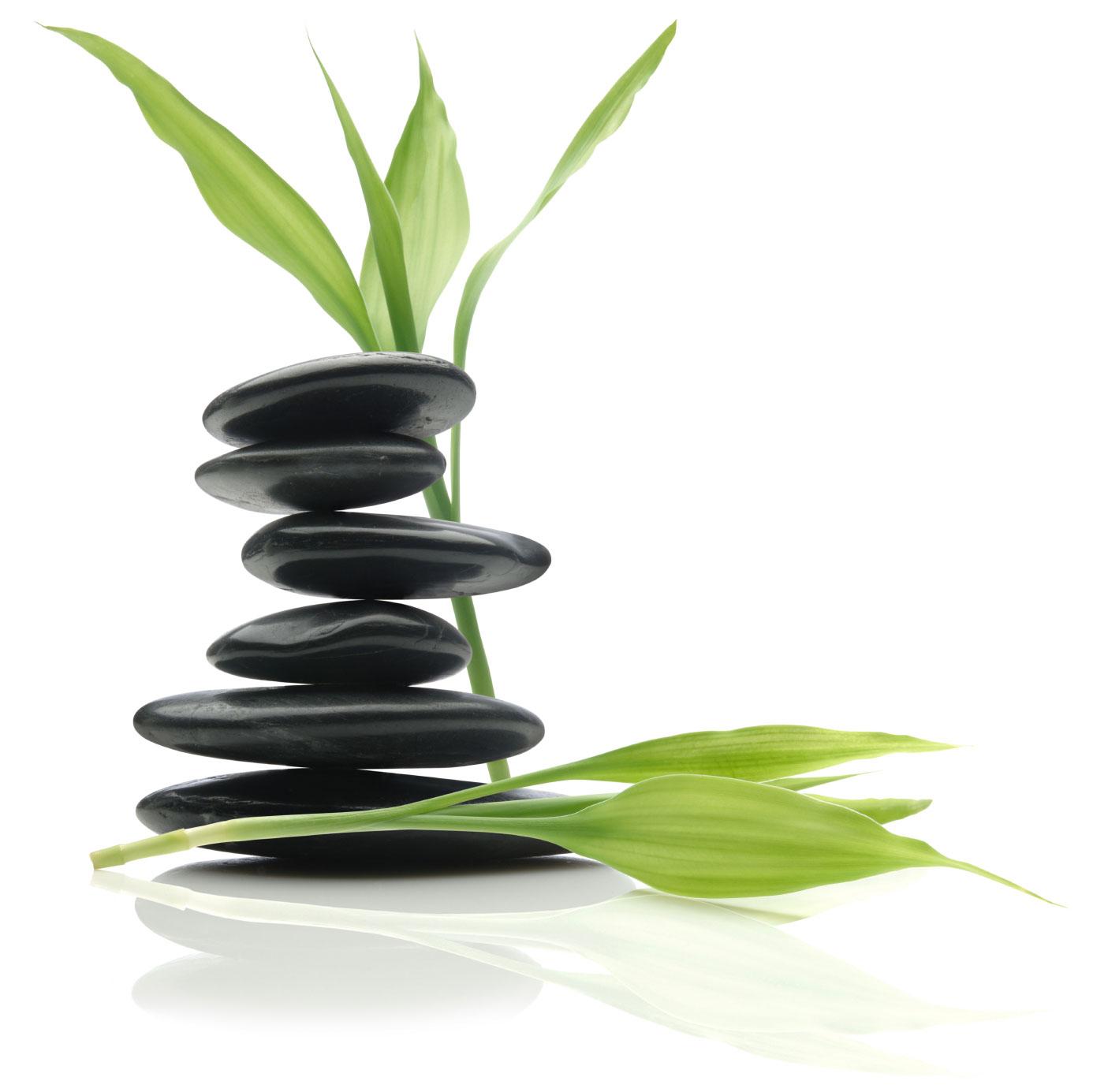 Equilibre- Nutrición y Bienestar