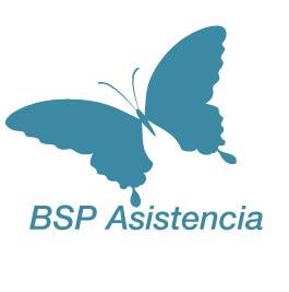 BSP Asistencia