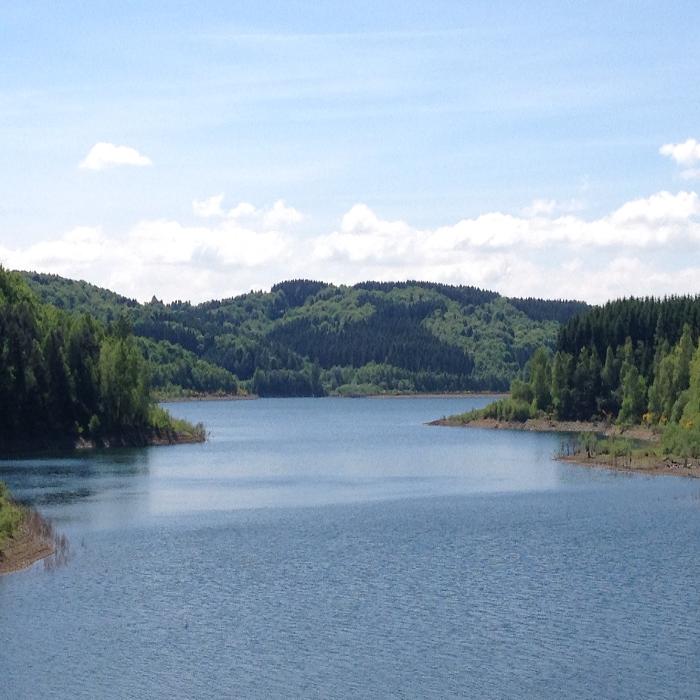 Bild zu naturkraft-JERA in Odenthal