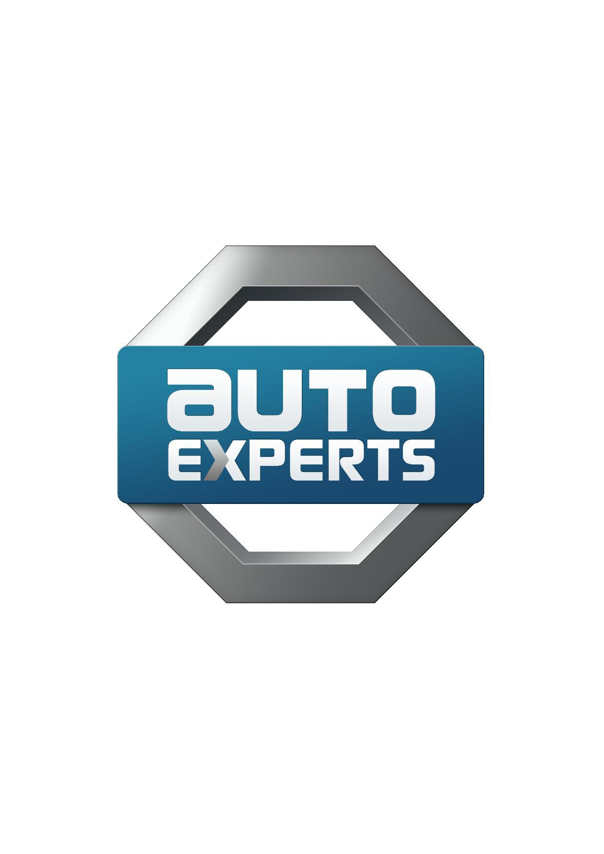 Auto-Experts Gmbh