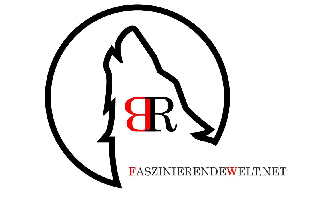 Logo von Herr Björn Reibert