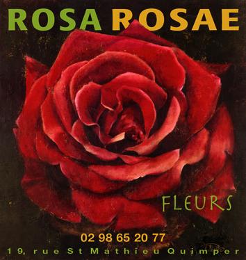 Rosa-rosae fleurs