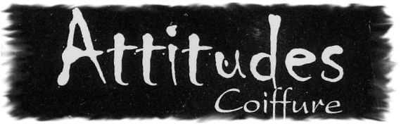Attitudes Coiffure coiffeur