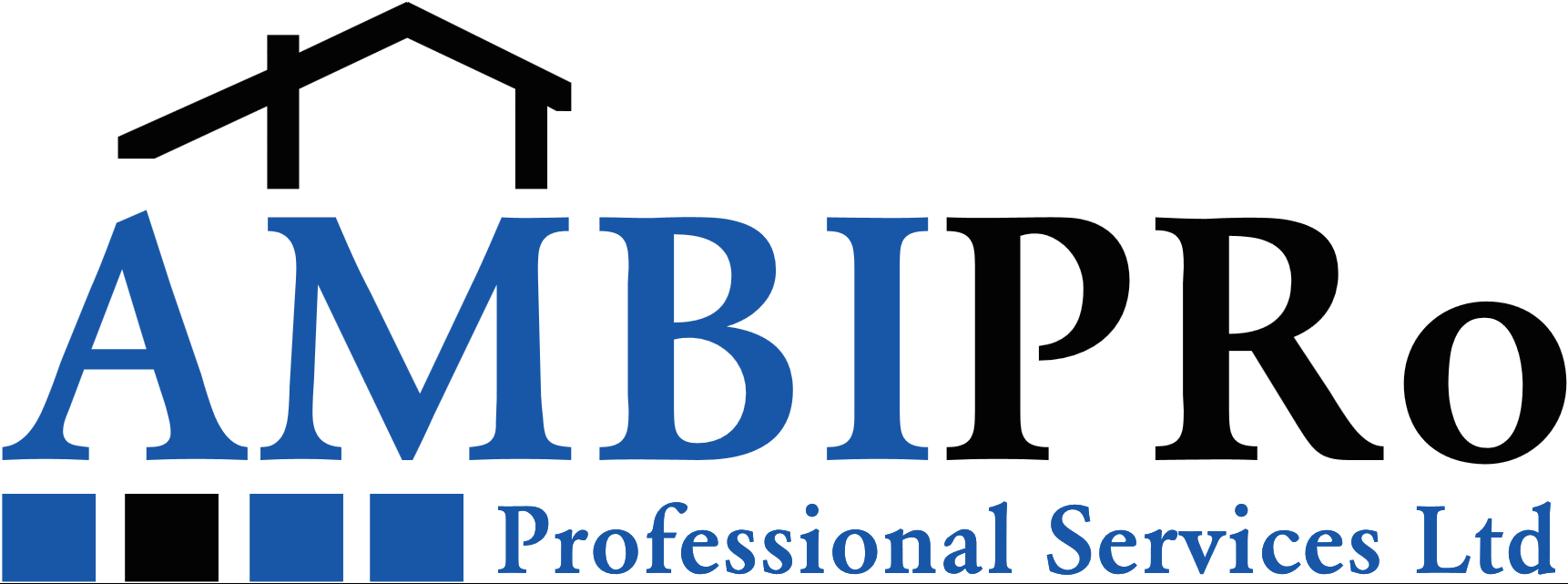 Ambipro Professional Services Ltd