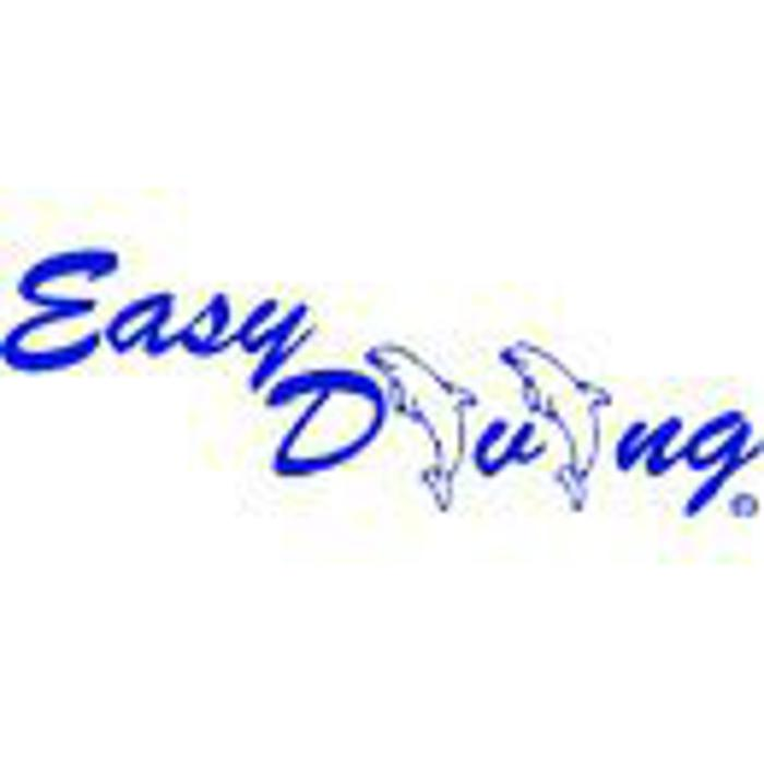 Bild zu Easy Diving in Wiesbaden