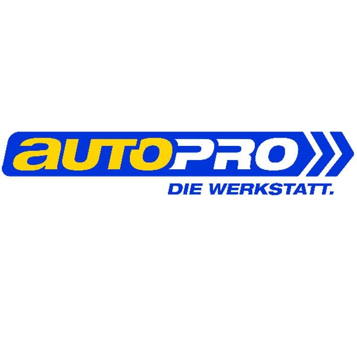 Bild zu Auto- und Motorradservice Sascha Luy in Köln