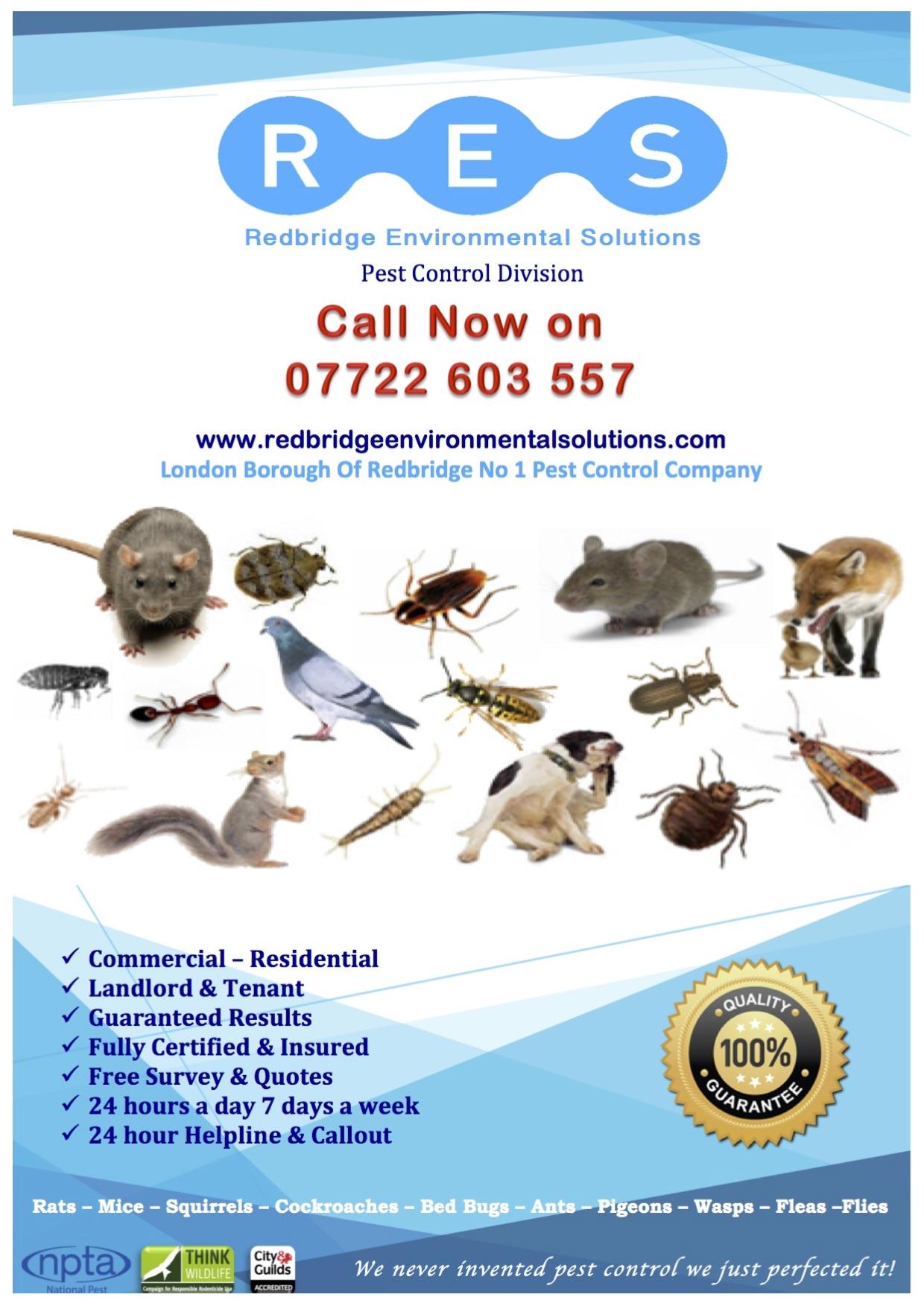 Redbridge Environmental Solutions - Ilford, London IG2 7ED - 07722 603557 | ShowMeLocal.com