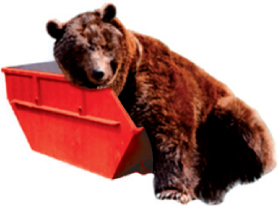 Bild zu Containerdienst Baer in Niederkrüchten