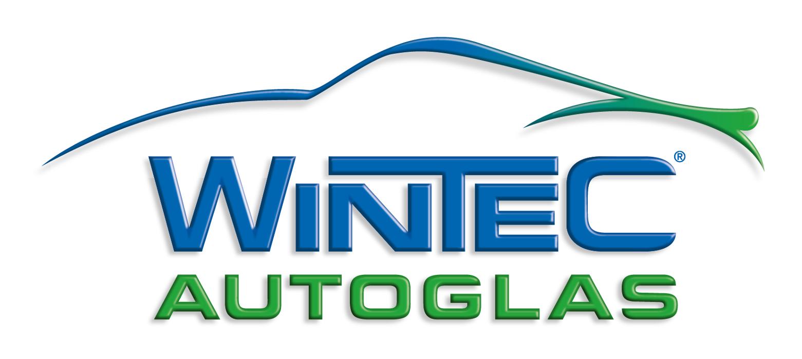 Logo von Wintec Autoglas Greifswald