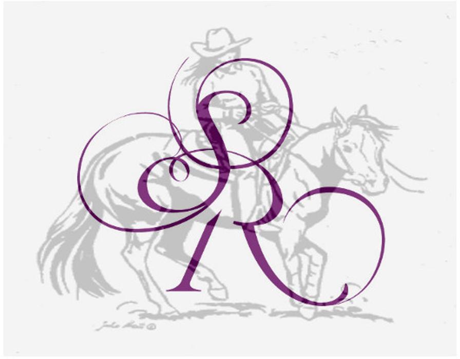 Saskia Ritter - Gutes Reiten - Harmonie zwischen Reiter und Pferd