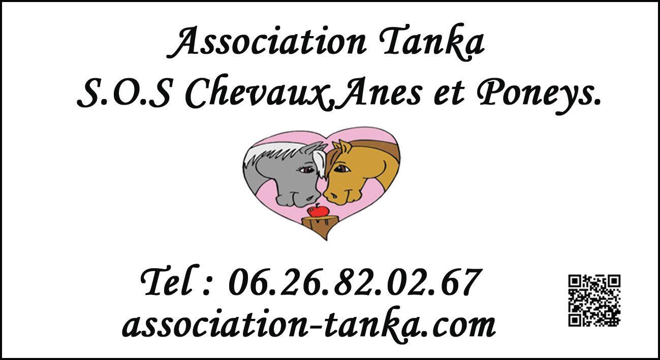 Association Tanka S.O.S Chevaux,Ânes et Poneys.