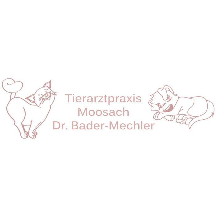 Bild zu Tierarztpraxis Moosach Dr. Bader-Mechler in München