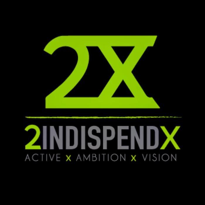 Logo von 2INDISPENDX
