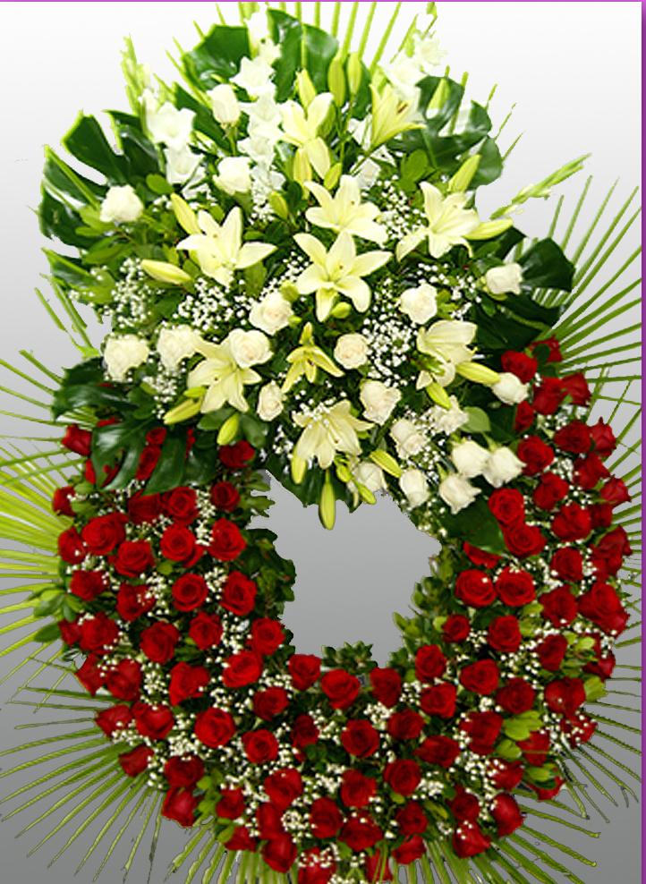 flores maribel