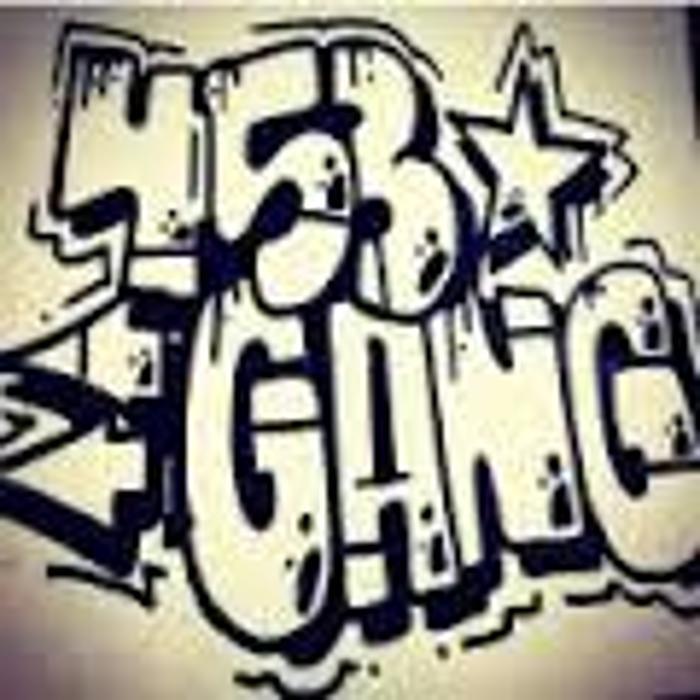 Logo von 453 Gang