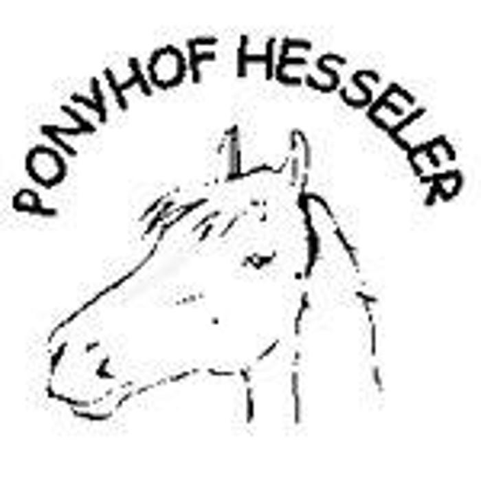 Bild zu Ponyhof Hesseler in Beckum