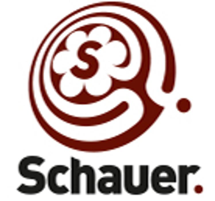 Bild zu Schauer Steuerberater- Partnerschaftsgesellschaft mbB in Remchingen
