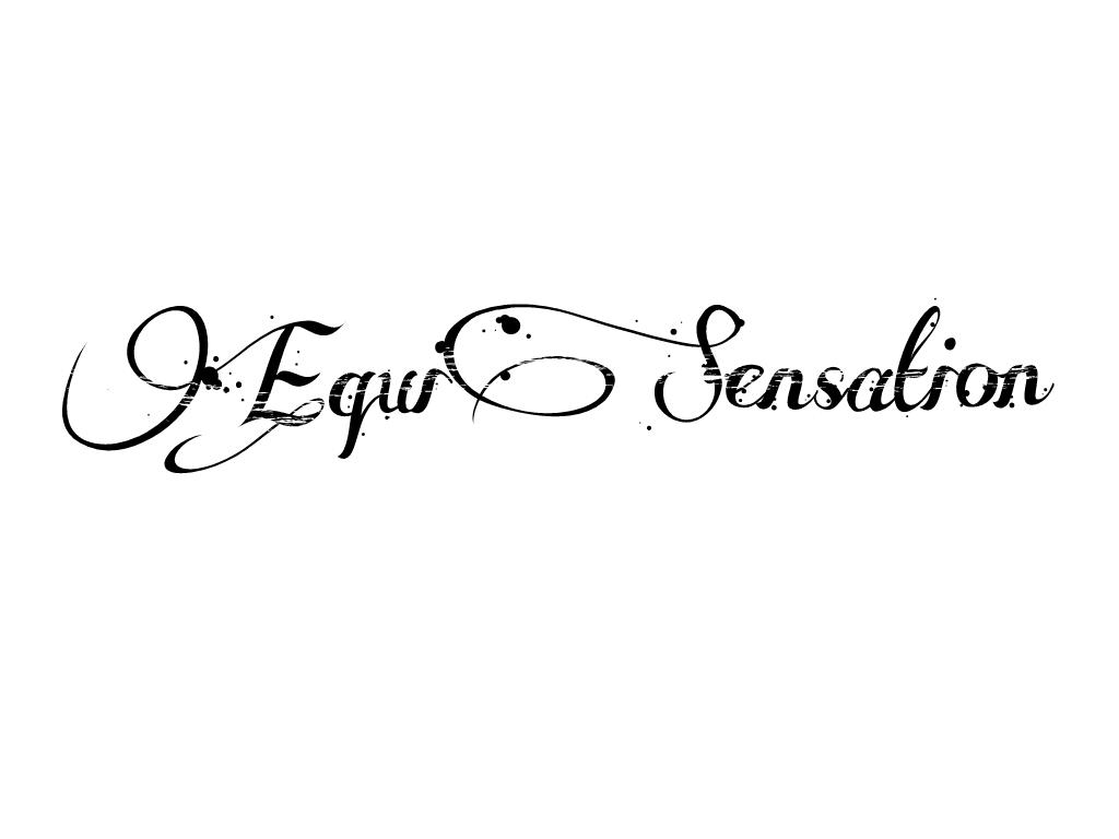EquiSensation