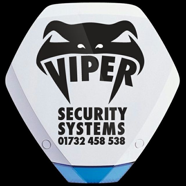 Viper Security Systems Ltd