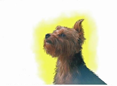 Dave Gilhooley Portraits & Illustration