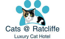 Cats at Ratcliffe Luxury Cat Hotel Eastwood 01773 770949