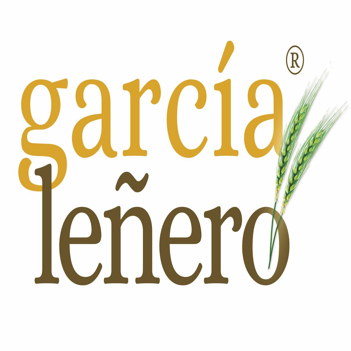 Garcia Leñero