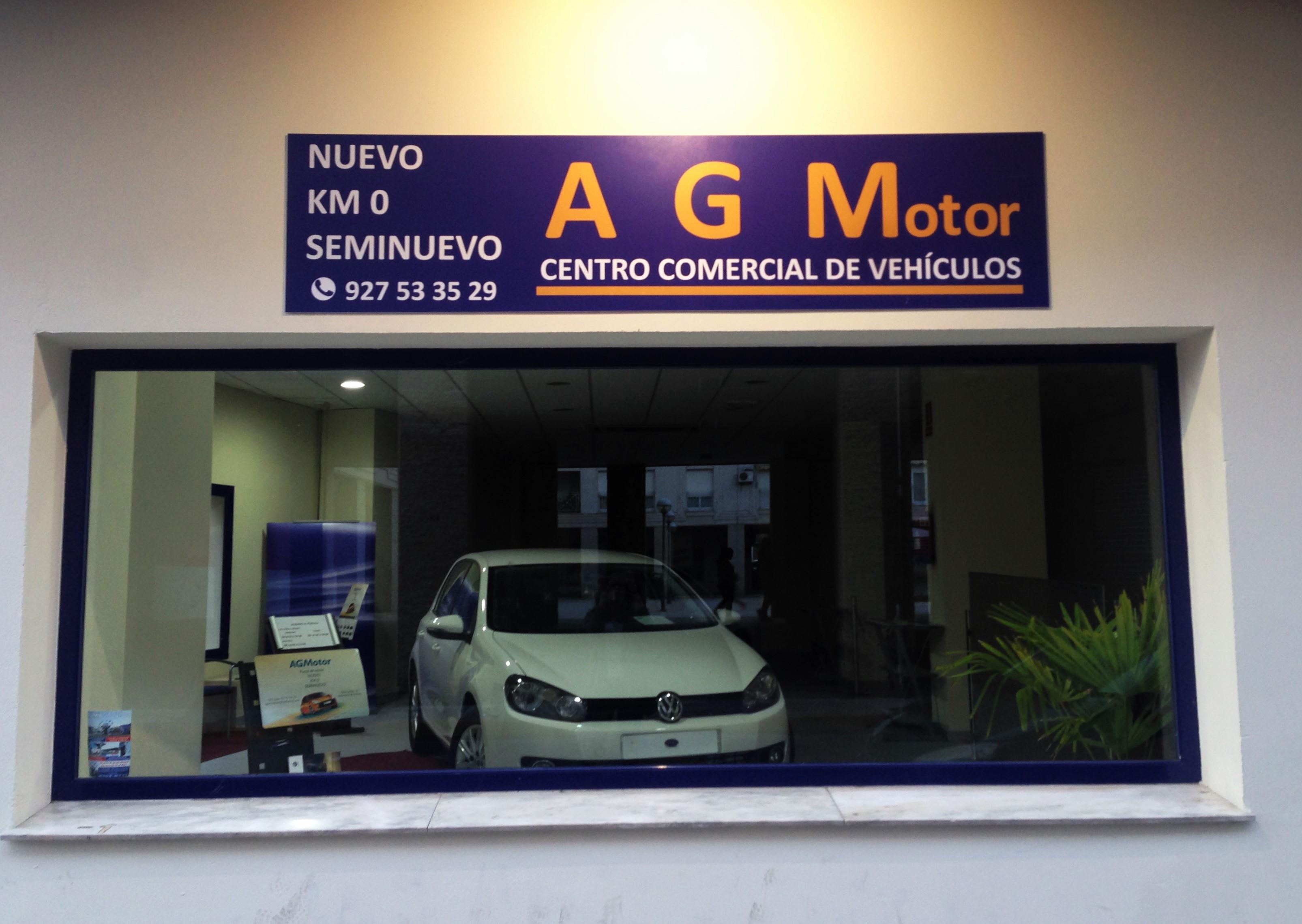 AGM Motor