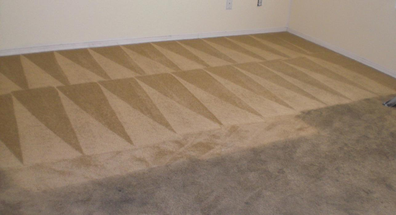 Full House Carpet Cleaning - Fort Collins, CO