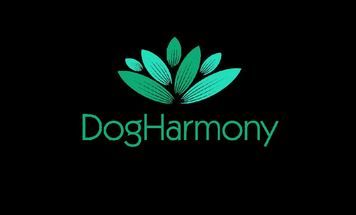 Bild zu DogHarmony in Mönchengladbach