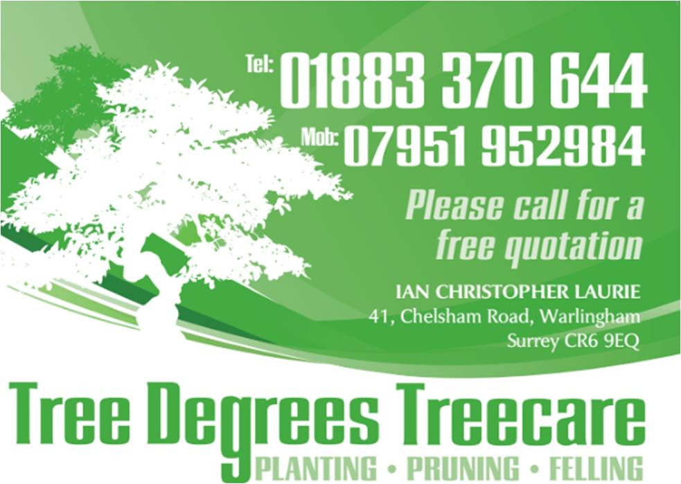 Tree Degrees Tree Care - Warlingham, Surrey CR6 9EQ - 01883 370644 | ShowMeLocal.com