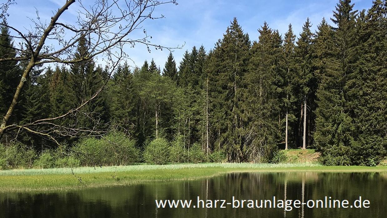 Logo von Harz - Braunlage - Ferienwohnungen - online