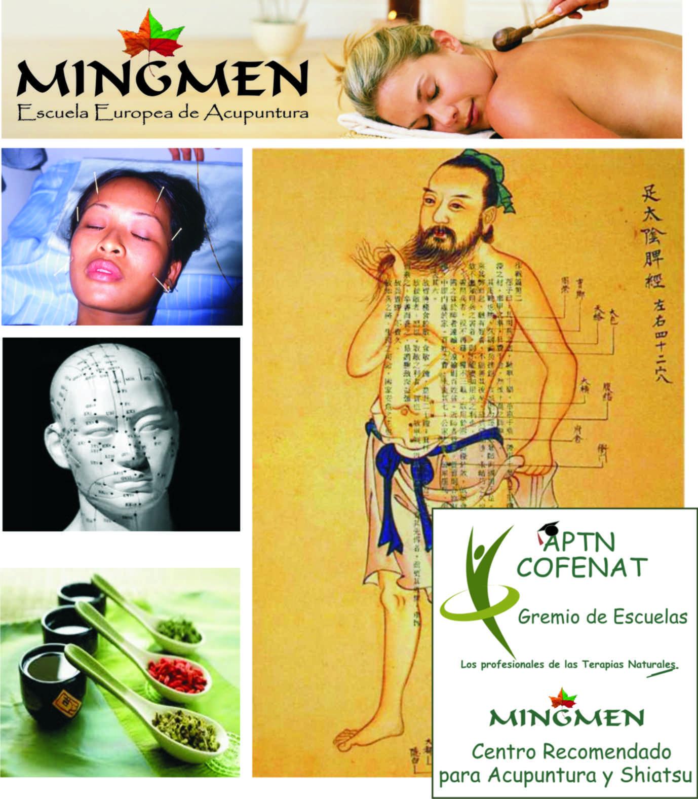 Escuela Europea de Acupuntura Mingmen