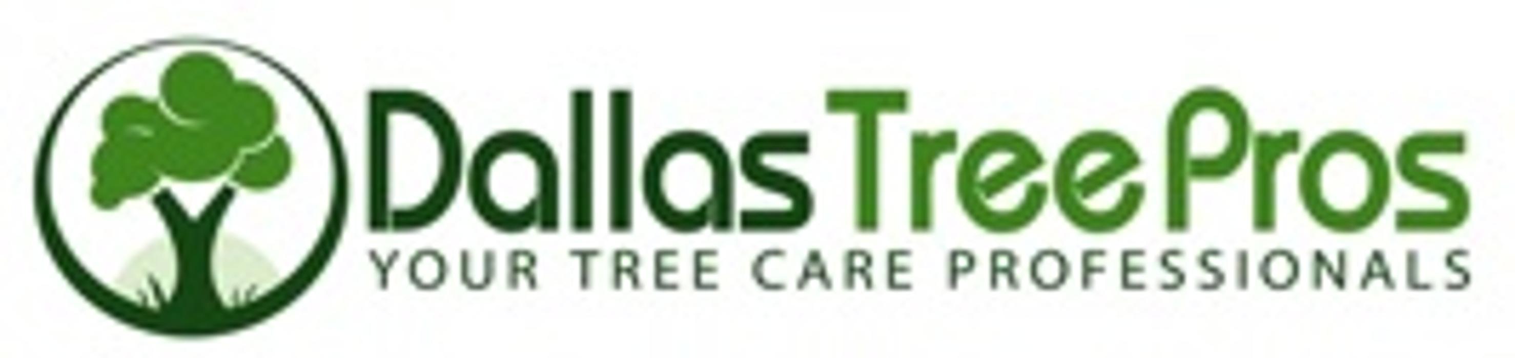 Dallas Tree Pros - Dallas, TX