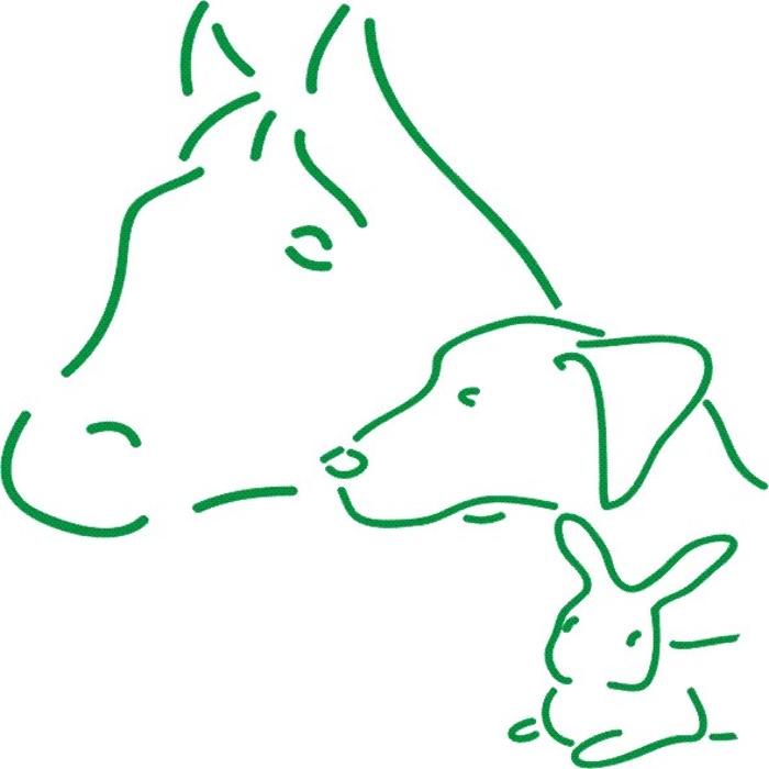 Bild zu Hunde-Physio-Praxis Andrea Gabel in Kirchheim unter Teck