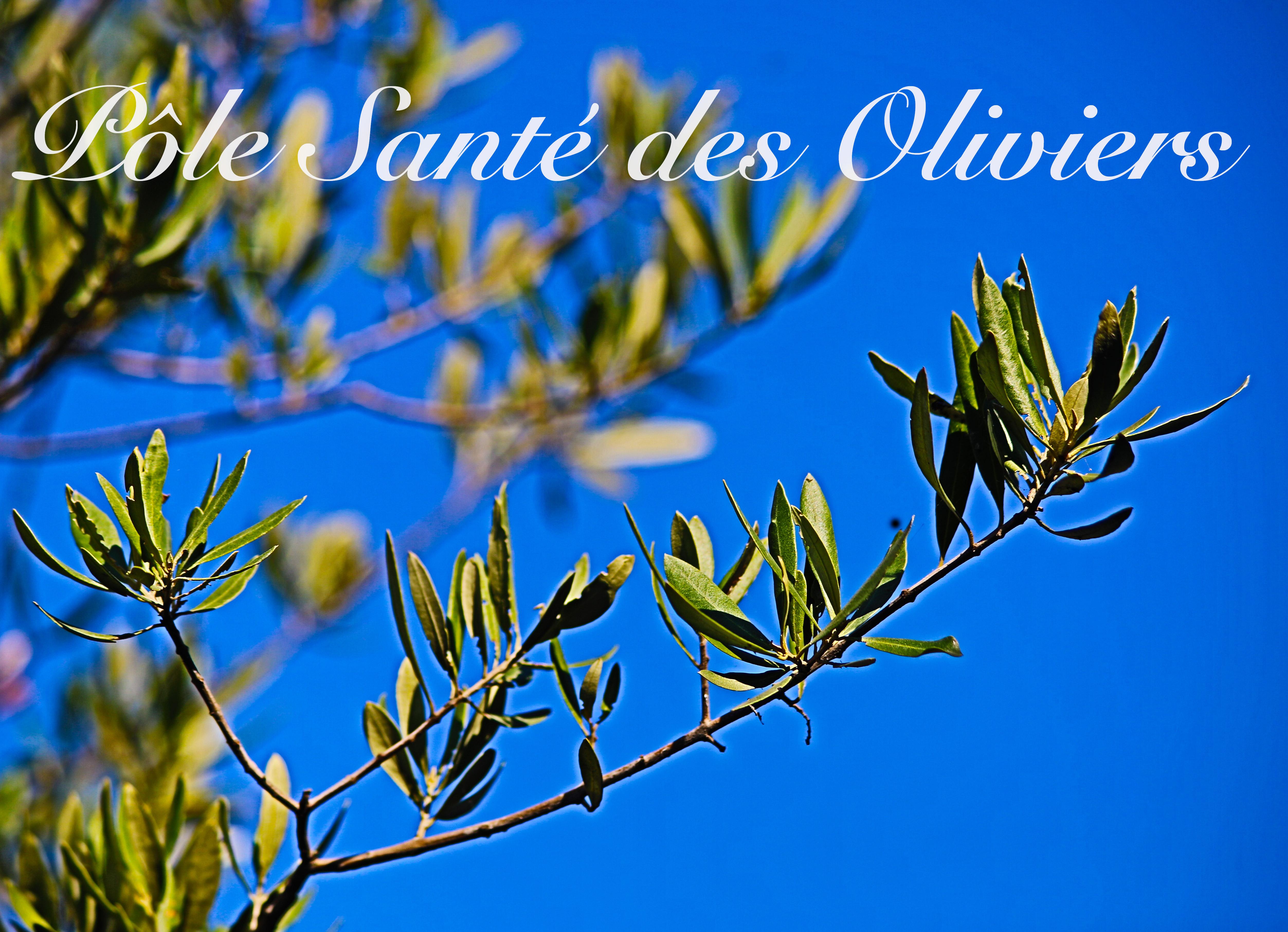 Pole santé des oliviers, Nicolas REYMOND, Claire DAMATTE-FAUCHERY, Elisa BOUTELLIER, Cécile RAUER