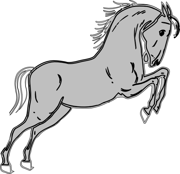Bobbo Equestrian