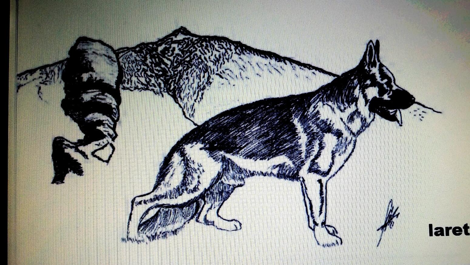 la retama can