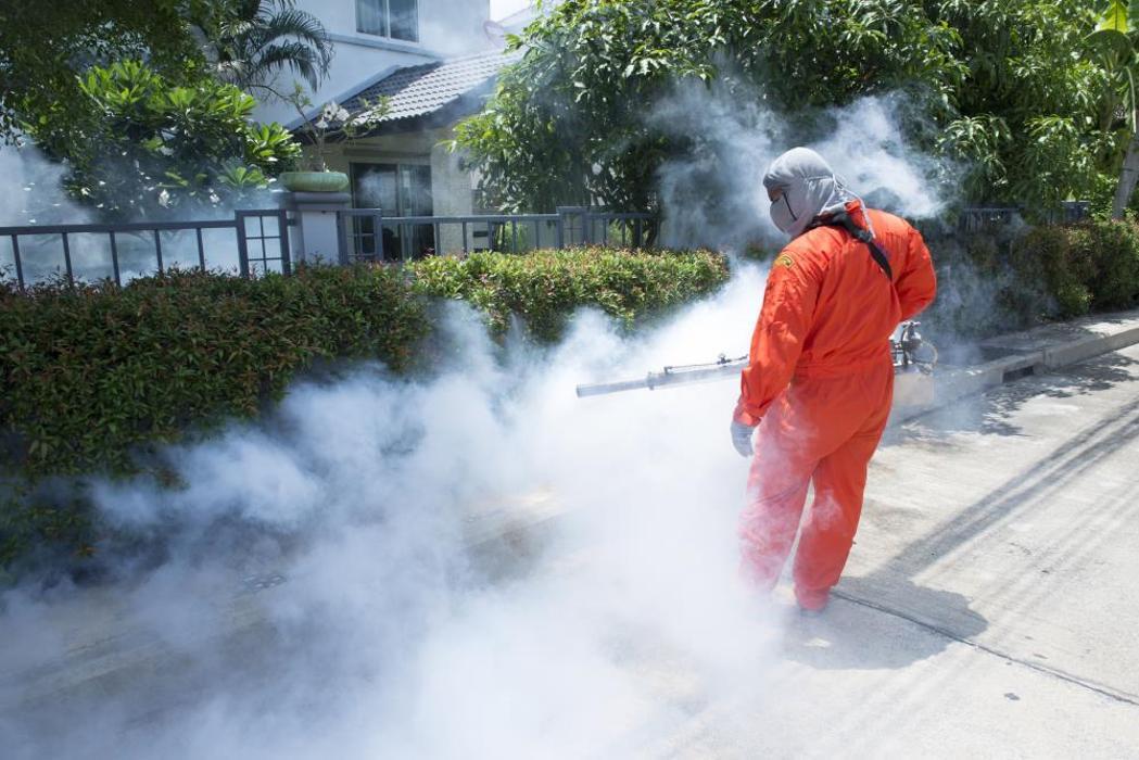Venibra Pest Control LLC - Weslaco, TX
