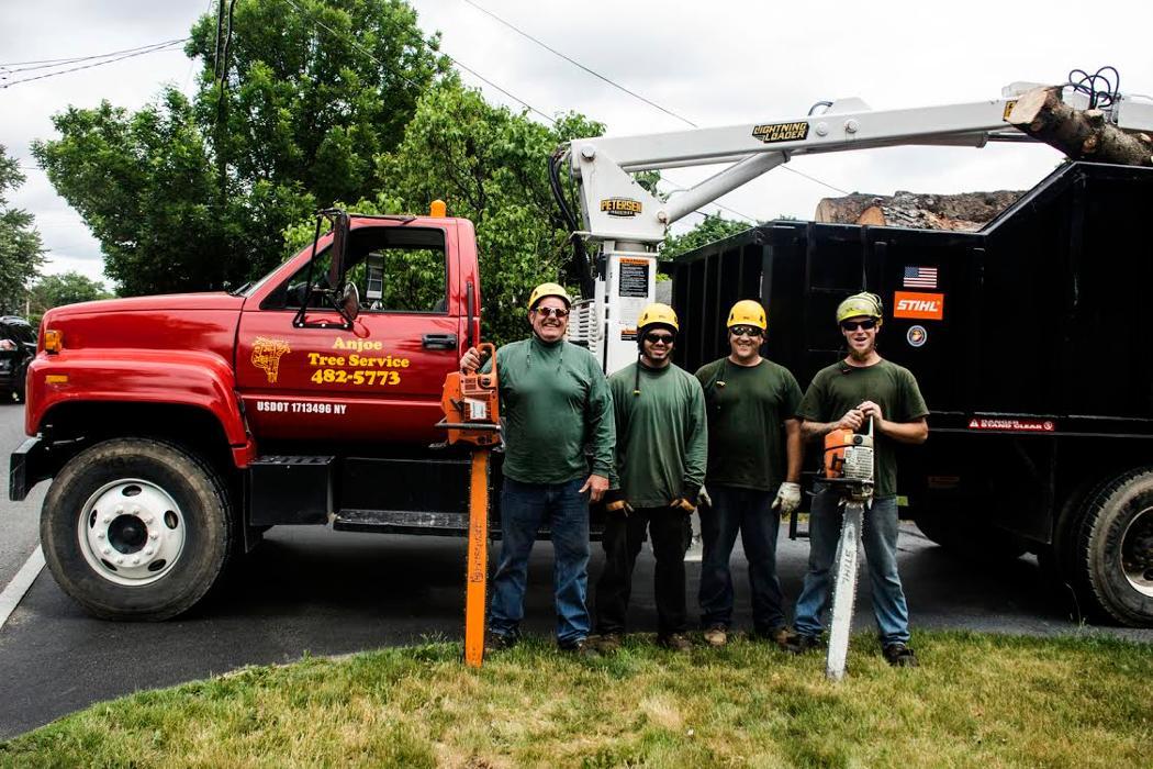 Anjoe Tree Service - Albany, NY