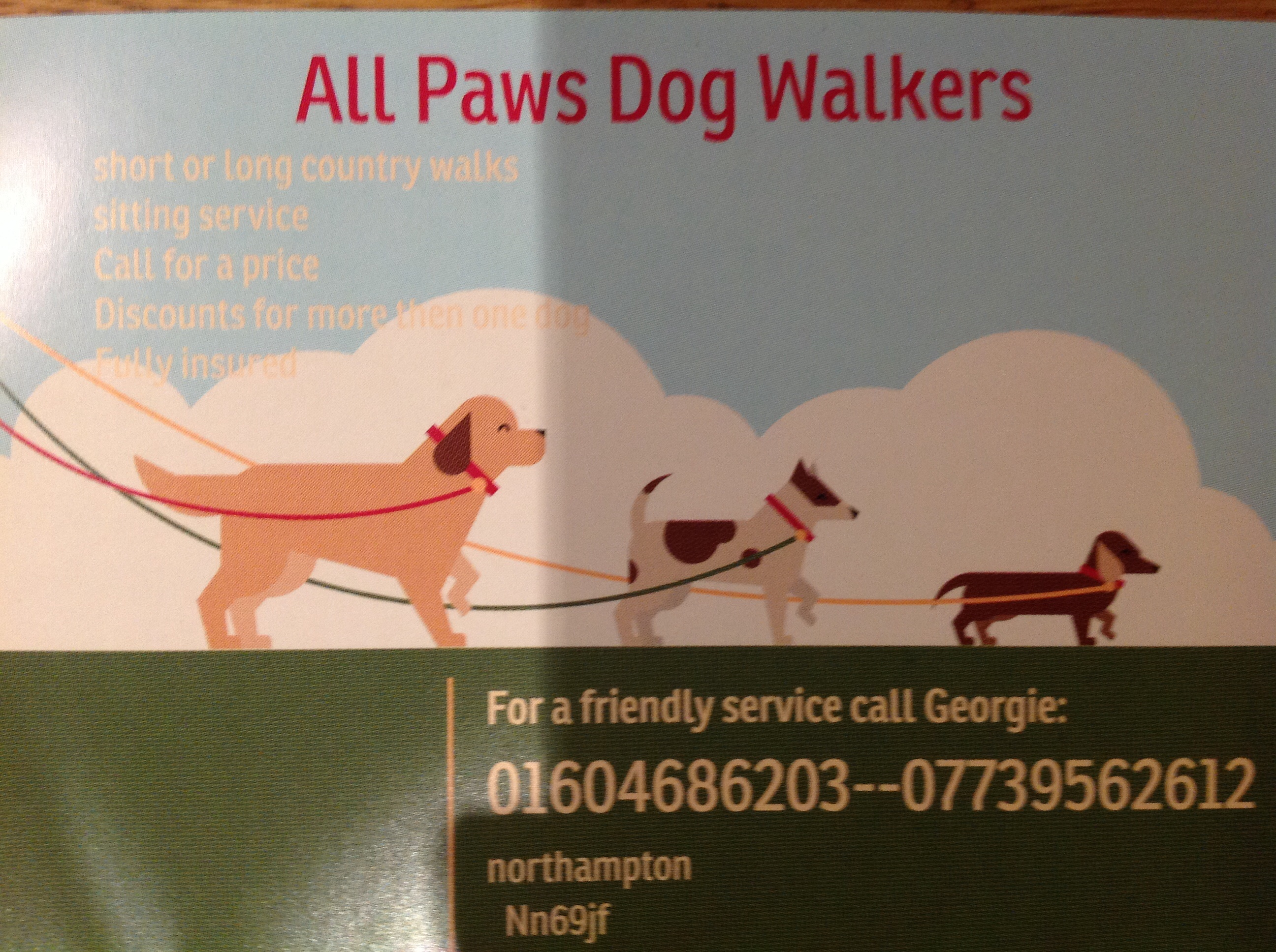 All paws dog walkers and home boarding